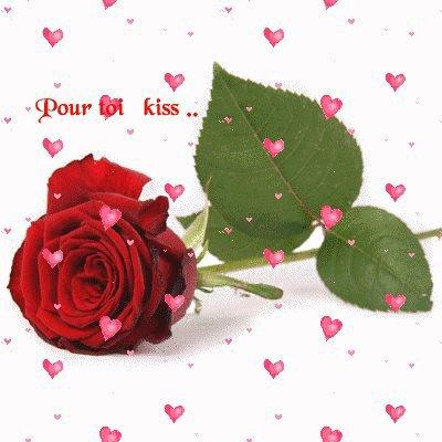 bonne journée à toutes et à tous   !!!