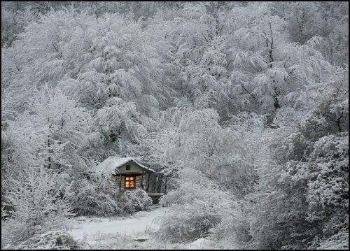 c'est l'hiver    !!!