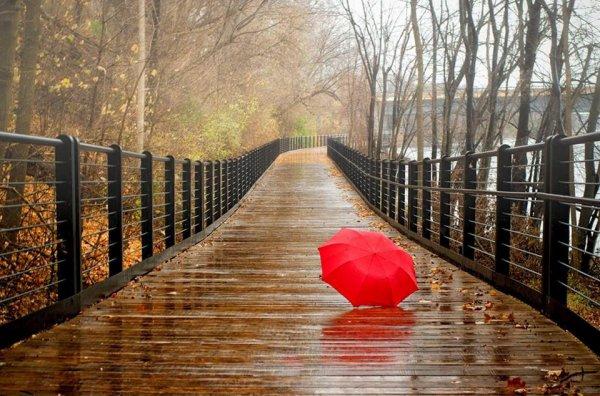 bonne soirée avec la pluie    !!!