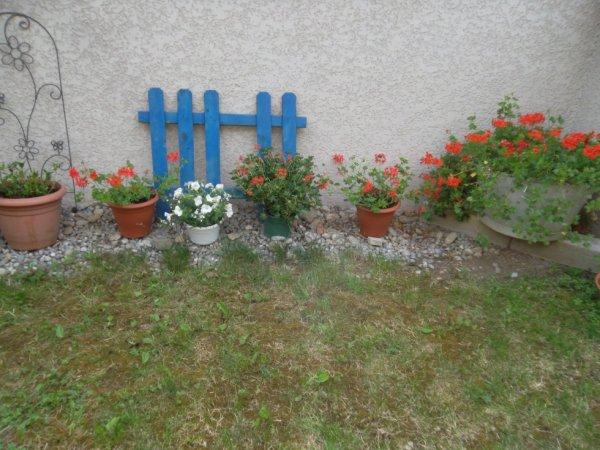 un coin de ma terrasse pour vous souhaiter une bonne journée   !!!