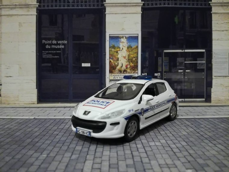 Police Municipale Grenoble- Peugeot 308