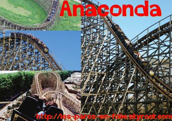 Walygator : Anaconda