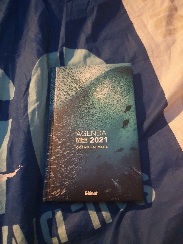 Mon nouvel agenda pour 2021.