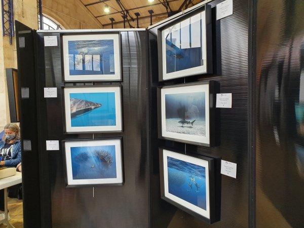 Voici quelques photos : O'dyssey La Journée Des Océans.