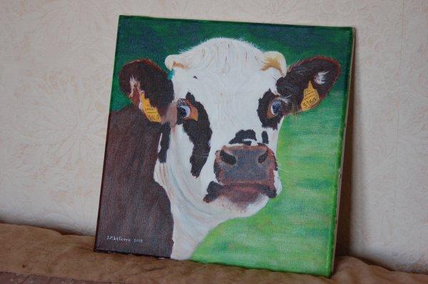 mercredi 14 août 2013 14:26   portrait de vache normande