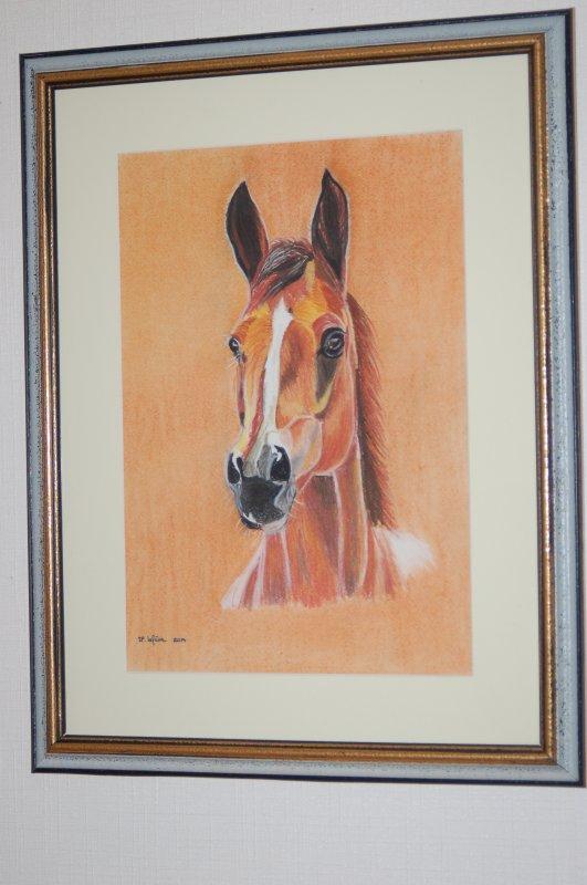 portrait de cheval 2