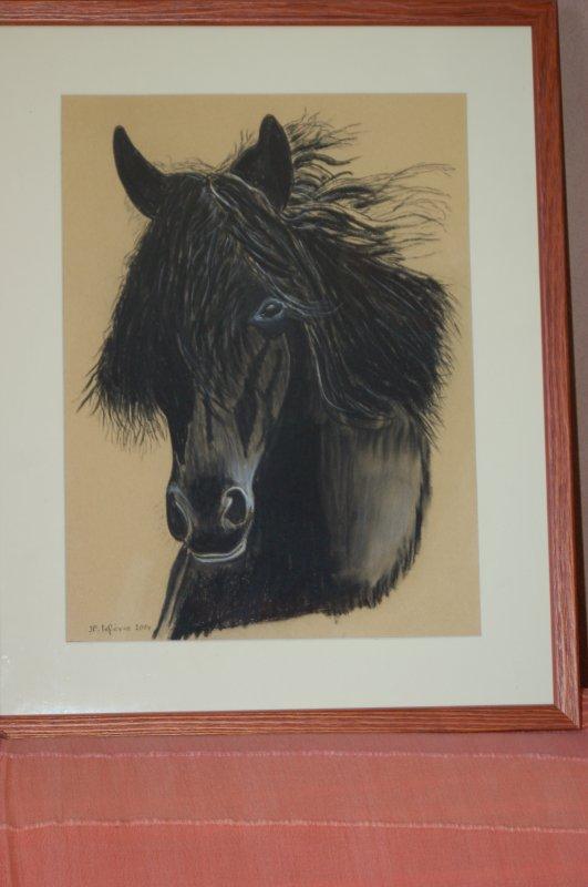 portrait cheval au pastel