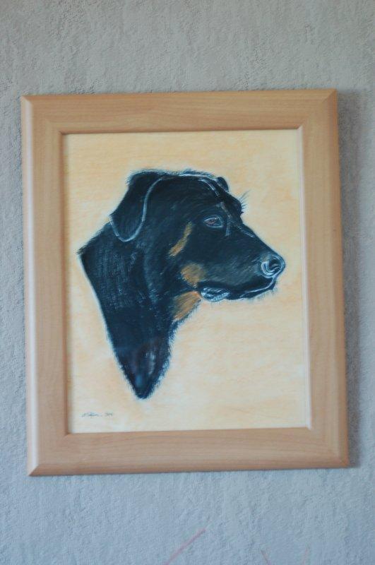 portrait chien au pastel