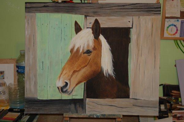cheval au box