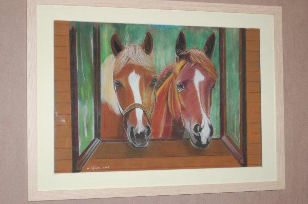 chevaux à la fenêtre