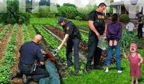 Nouvelle ordre mondial en marche  ! La police dans les potagers 15 Juin 2014