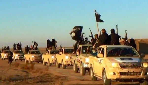 NOUVELLE ORDRE MONDIAL EN MARCHE ! État islamique (EI) : Vingt-six vérités sur le groupe qu'on veut vous cacher