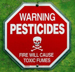FIN DE VIE SUR TERRE ORGANISEE : Pesticides : liste des fruits et légumes les plus contaminés….