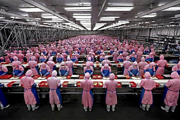 NOUVEL ORDRE MONDIAL SATANIQUE NAZI :Des millions de petits hamsters qui pédalent sans fin...