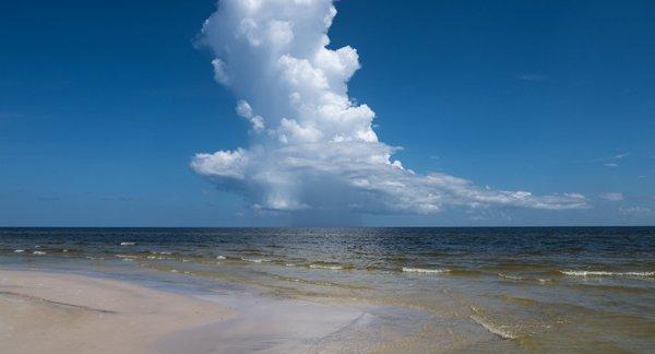 FIN DE VIE SUR TERRE :Une gigantesque «zone morte» retrouvée dans le golfe du Mexique