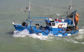 FIN DE VIE SUR TERRE ORGANISEE:Il y a 80 % de poissons en moins qu'en 1950… pour deux fois plus de bateaux de pêche