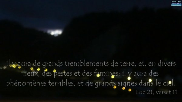 CITATION DE LA NUIT: