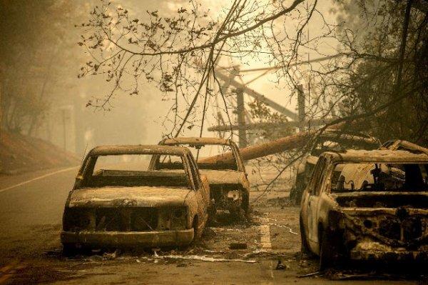 """ORDO AB CHAOS :  """"La plupart des gens ne réalisent pas l'ampleur de l'effondrement qui nous attend"""""""