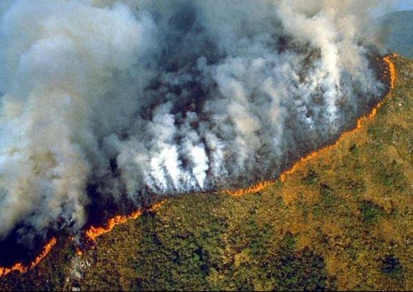 FIN DE VIE SUR TERRE ORGANISEE:ACCUEIL   CATÉGORIES »   NEWSLETTER   CONTACT Terrible: La forêt amazonienne s'embrase depuis 16 jours. Bolsonaro laisse faire (photos)