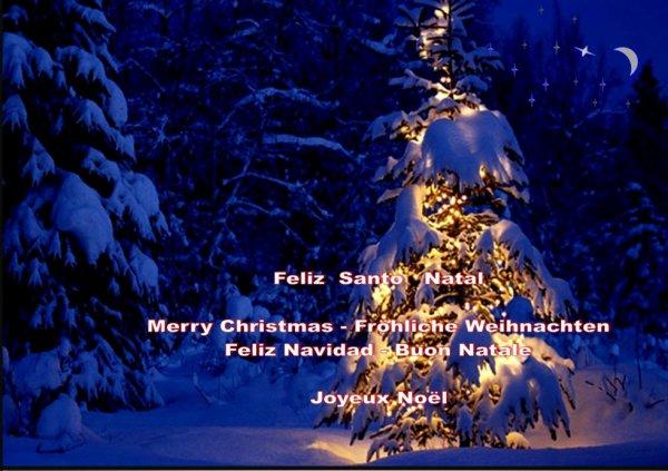 Bonnes fêtes à tous !Je vous embrasse