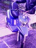 Photo de ceddu77660