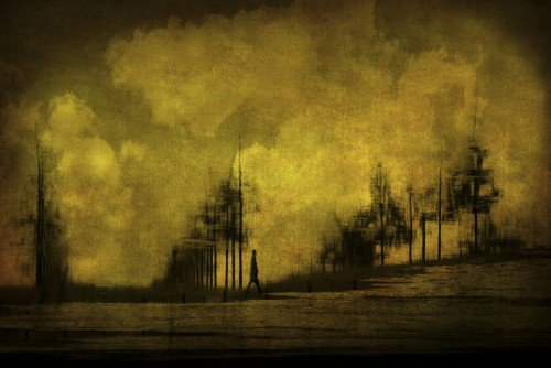 Silhouettes   by	  Anja Buehrer
