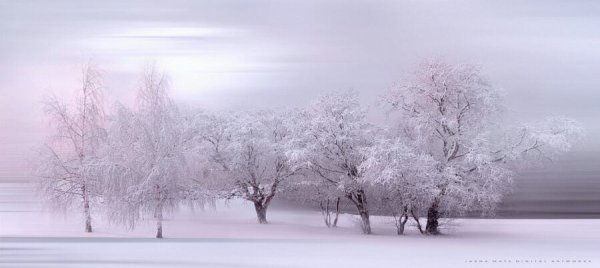 """Winter Fairytale"""