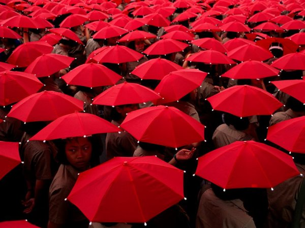 ☂☂☂ Today.. (Wed 10th Feb, 2016) is......Umbrella Day!! :) ☂☂☂