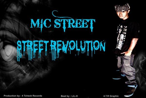 Mic STreeT /  STreeT ReVoLUTion (2011)