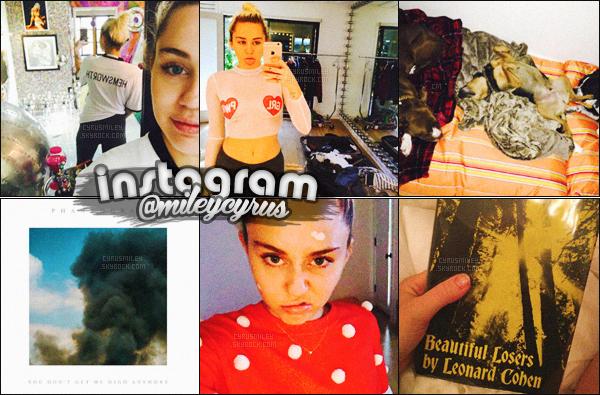 ✦ ✦  Découvrez les derniers clichés de Miley C. posté sur son Instagram personnel !