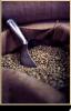 Green coffee di certo è vantaggioso