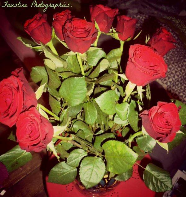 Rouge. La couleur de l'amour. La couleur du sang.