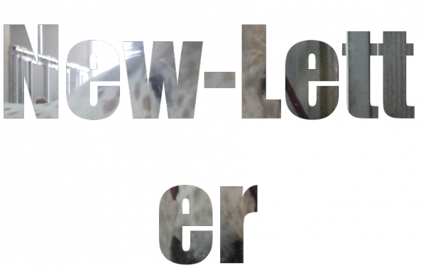 new-letter !!!!!!