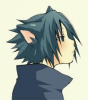 Sasuke neko :3
