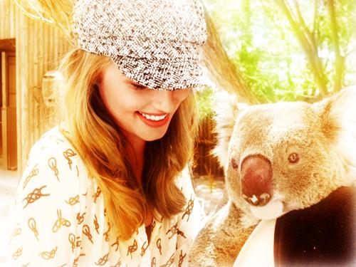 Dianna et un Koala