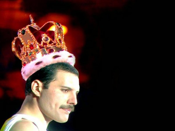 ♥ Queen ♥  Freddy Mercury ♥