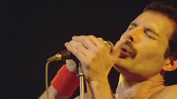 *Freddy Mercury