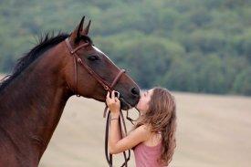 Toutes les histoires sont différentes, mais à chaque fois, elle parlent d'amour.