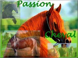 Notre passions.