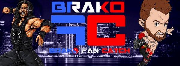 Brako Fan Catch