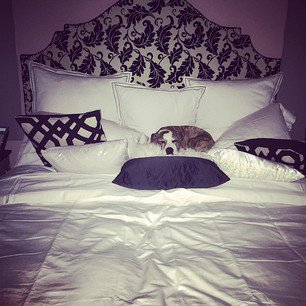 Kaley Cuoco a posté 1 nouvelle photo sur Instagram le 5 novembre, 3 photos le 7 novembre et 2 photos le 8 novembre