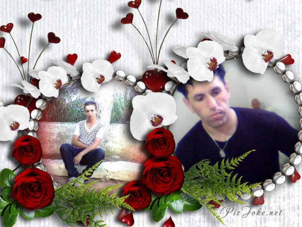 hassan@imad