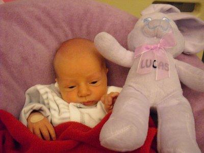 ♥ Lucas ♥