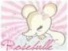 rosebulle
