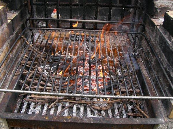 Repas poisson au barbecue !!!