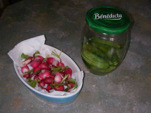 Mes récoltes du jour au jardin !!