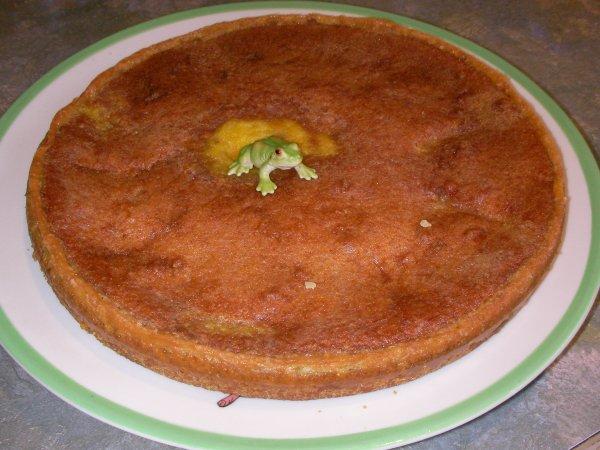 Un bon gâteau ça vous tente ??