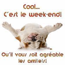 Bonjour ...bon week-end à toutes !!!