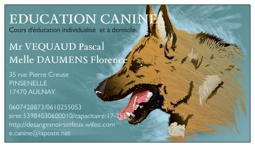 EDUCATION CANINE AULNAYSIENNE