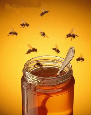 Pourquoi il ne faut jamais donner de miel aux enfants avant 1 an